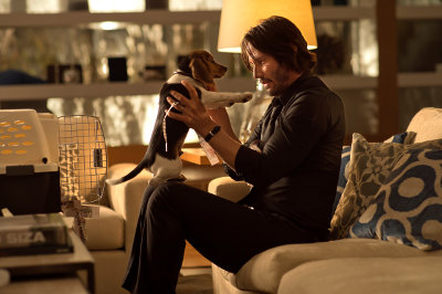 John Wick and his avenged puppy