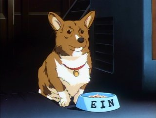 Ein is hungry