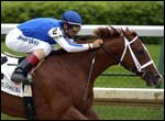 John R. Velazquez, aboard Maddalena, rides to win the first race at Churchill Downs