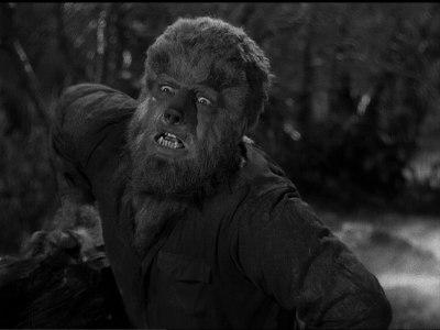The Wolfman sez hi